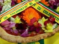 Petalosa: la nuova pizza Coldiretti dedicata alla Festa della Donna Foto