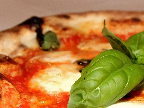 Una pizza al giorno leva il medico di torno, presto fatto con la Margherita di Guglielmo Foto